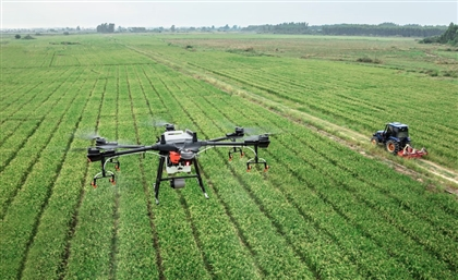 $2 Million African Agritech Prize Now Accepting Applications